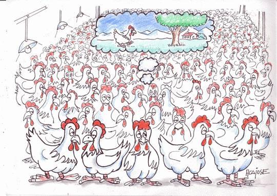CETA-TTIP : CQFD 3
